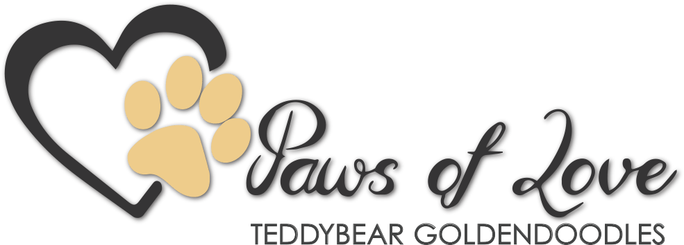 Paws of Love Teddybear Goldendoodles Logo